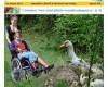 VOZKA č. 1/2014 – magazín o životě a pro život na vozíku