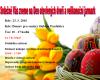 23.3.16 – Velikonoční jarmark – Domov pro seniory Dubina Pardubice