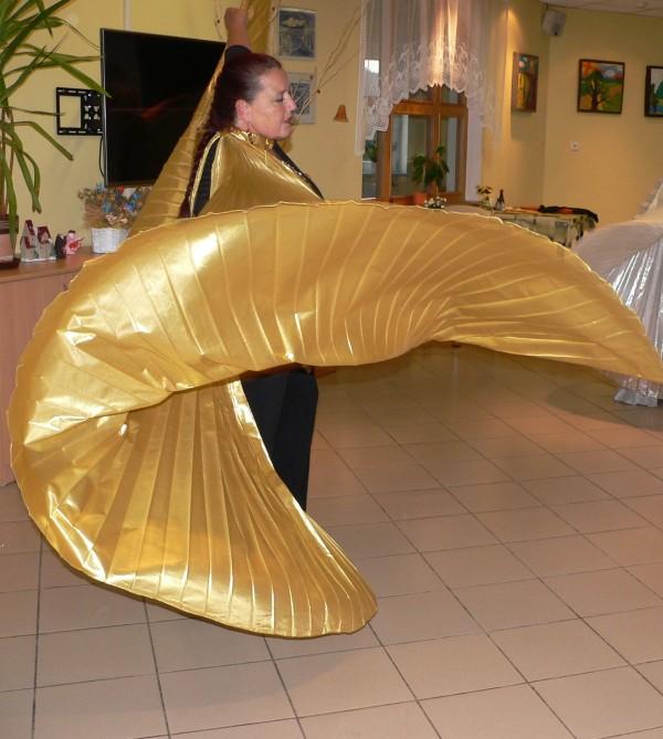 P1370581Letovice křídla