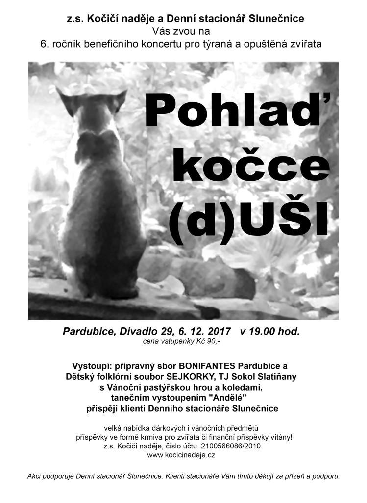 Plakát kočka 2017