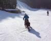Mohou děti s handicapem lyžovat?