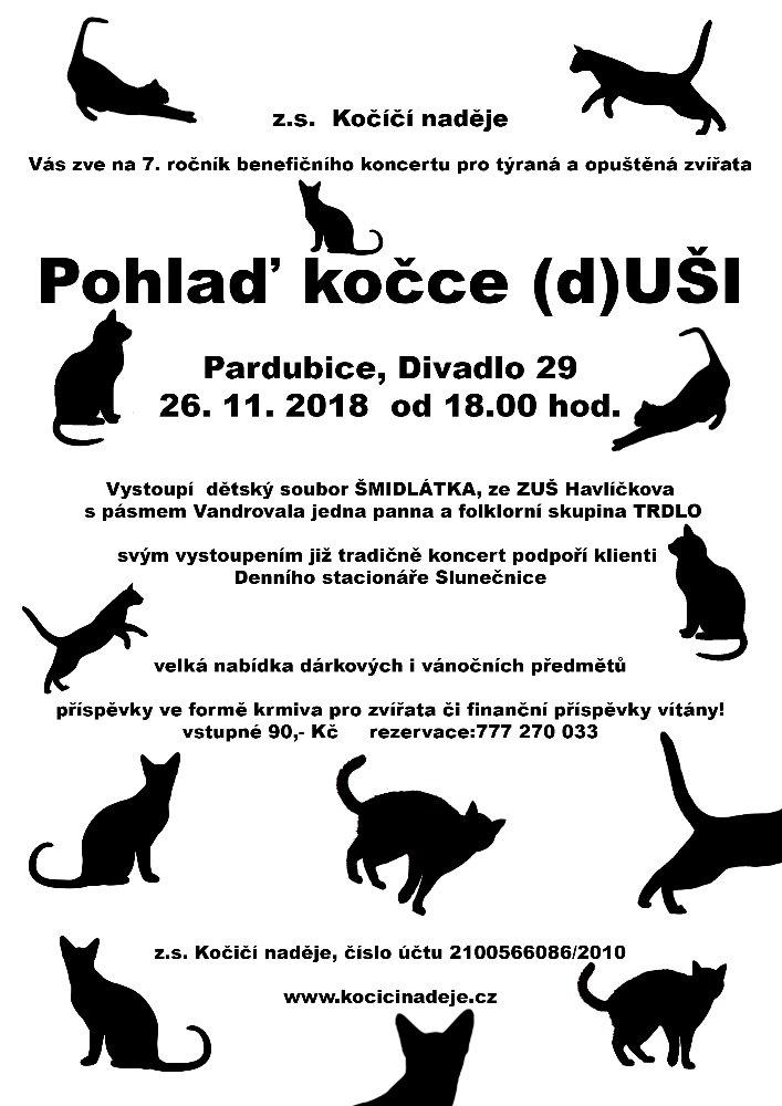 Plakát Pohlaď kočce duši_ (002)