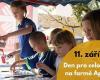Hravé odpoledne na farmě Apolenka – Den pro celou rodinu